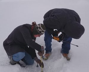 measuring the ice